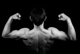 Popularnośc siłowni zewnętrznych