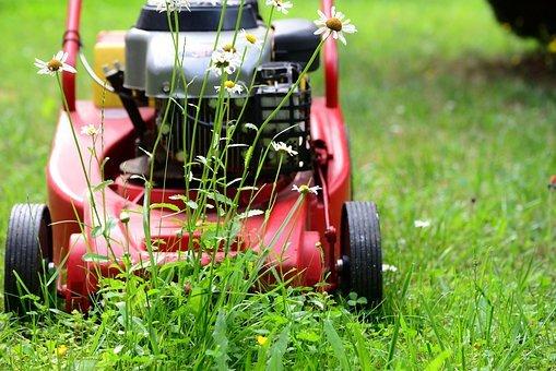 Wydajny traktor Wolf Garten