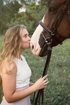 Glinka na kończyny dla koni