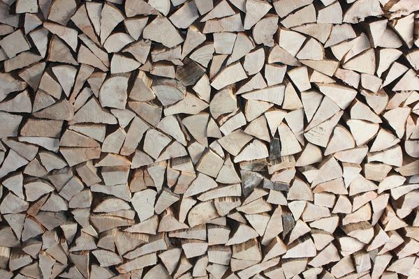 piło łuparka do drewna